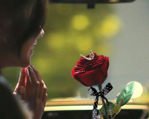 彼女に赤いバラをプレゼントしているところ